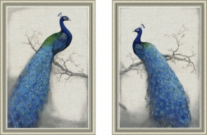 Grafika PEACOCK Blue 1