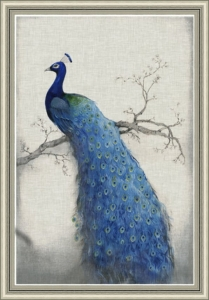 Grafika PEACOCK Blue 2